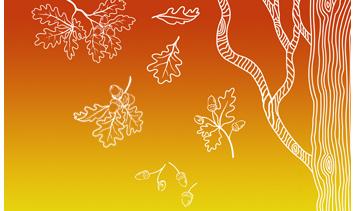 Есенно намаление в Divanidea